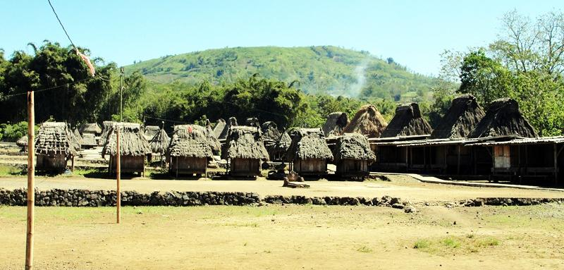 Traditional Village of Bajawa